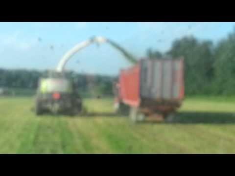 Bach farms dorchester wi