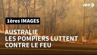 Incendies en Australie: les pompiers luttent contre le feu | AFP Images
