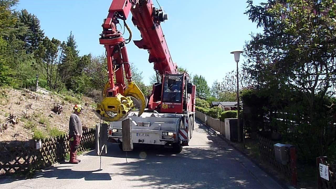 riesiger Kranwagen mit Baumschere fällt Problem-Baum in Minuten! Terex Demag Teleskop Mobilkran