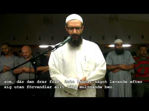 shaykh-abu-ra'ad---surah-al-dhaariyaat