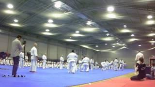 Макс Дедик: дан-тест, нокдаун в 12 бою