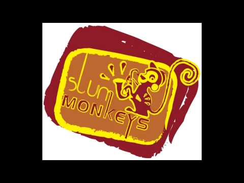 Slum Monkeys - mister monkeys