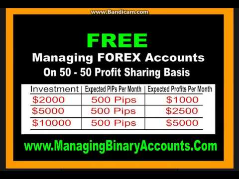 Forex trading course in india