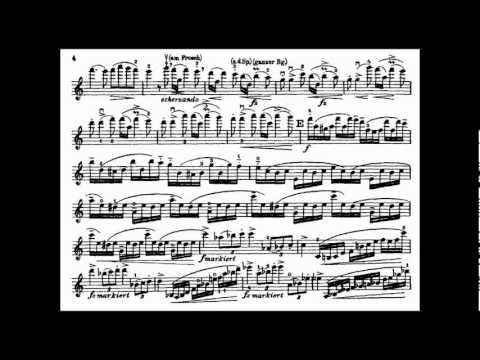 Dvorak, A.L. mvt1 violin concerto