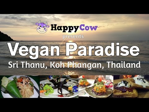 Koh Phangan, Thailand / World's First Vegan Island? Ken Spector interviews