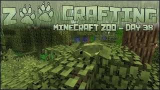 Swampy Chameleon Leaves! 🐘 Zoo Crafting: Season 2 - Episode #38