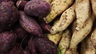 Can Goats Eat Sweet Potatoes? 🍠 (Health Benefits/Risks)