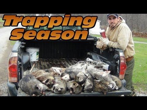 Pennsylvania Trapping Season 2013 - 2014 - Hunter