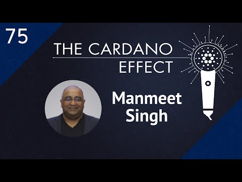 Connecting Crypto With Business And Legislation: Interview With Manmeet Singh | TCE 75
