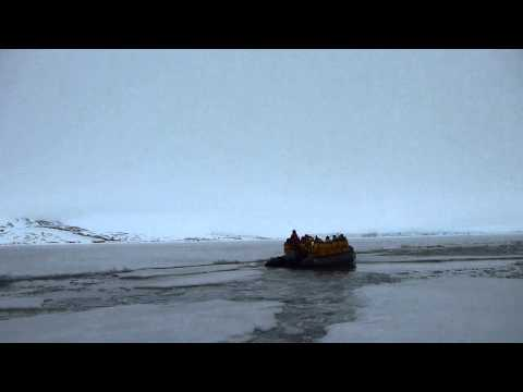Zodiac excursion in icy waters (Arctic)