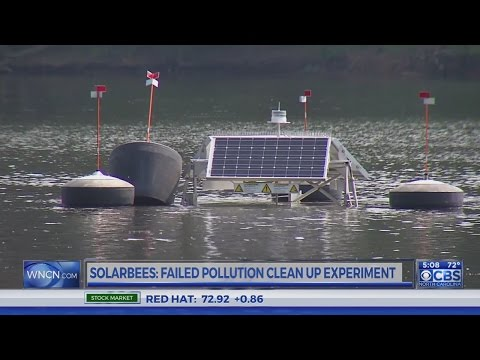 Environmental groups call on NC to address Jordan Lake pollution
