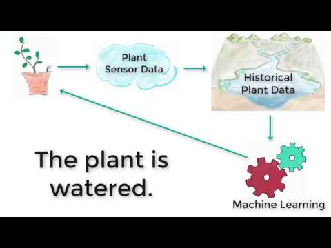 IoT is as simple as watering your plants