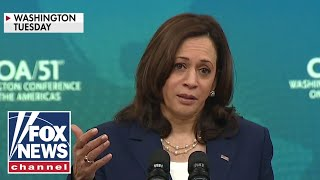 'The Five' react to VP Harris blaming border crisis on climate change