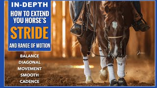 How to Extend &amp Balance Your Horses Stride! 5 VERY Effective Exercises!