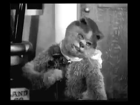 Смотреть клип Психоделика 1914   кот и мышь онлайн бесплатно в качестве