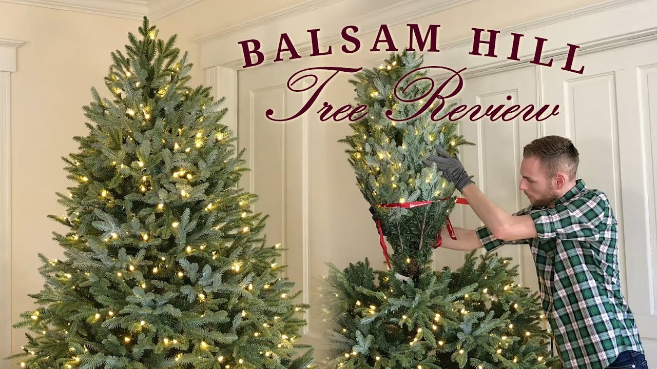 Balsam Hill Tree Review - Fraser Fir
