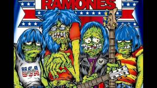 03. Eddie Vedder & Zeker - I Believe In Miracles (A tribute to Ramones)