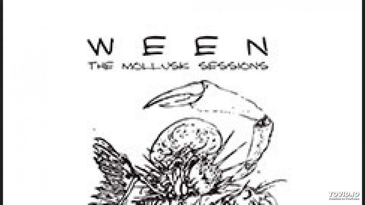 Ween - Mollusk Sessions - Kim Smoltz - YouTube
