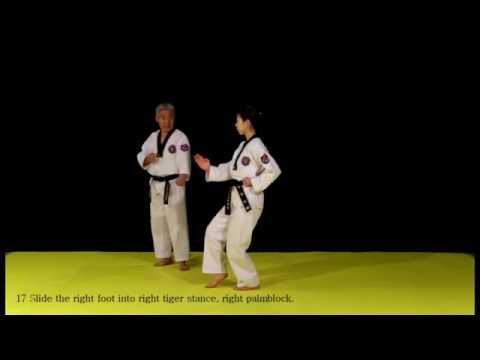 Poomsae Taeguk Palchang 8 Taekwondo