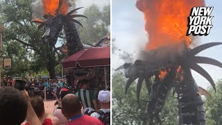 Idiotic Disney fans don't move as float bursts into flames | New York Post