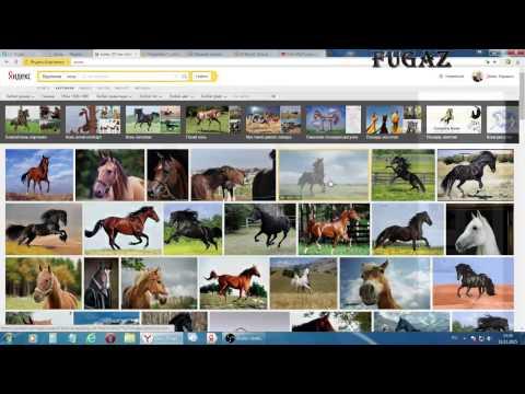 Как на форуме вставить картинку, видео и зарегистрироваться