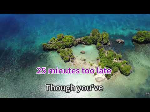 25 Minutes [Karaoke Cover] - Michael Learns To Rock