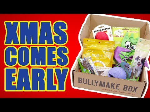 christmas-themed-toys-and-treats-unboxing---dog-toy-review-|-bullymake-subscription-box