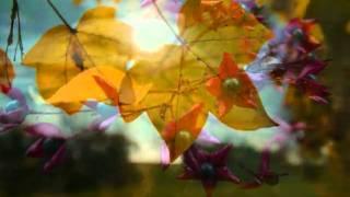 In Paradisum (Gabriel Fauré: Requiem)