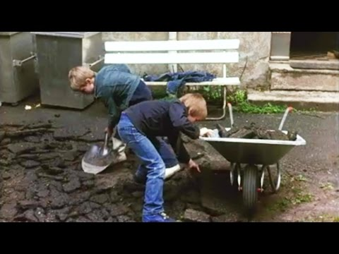 Gjør no med bakgården din, 1981