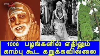 1008  பழங்களில் எதிலும் காம்பு கூட கறுக்கவில்லை! | Periyava | Maha Periyava | Britain Tamil Bhakthi