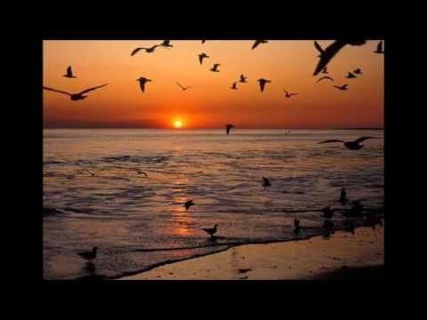 Can Ceylan - Hep Çakıl Koksun Deniz