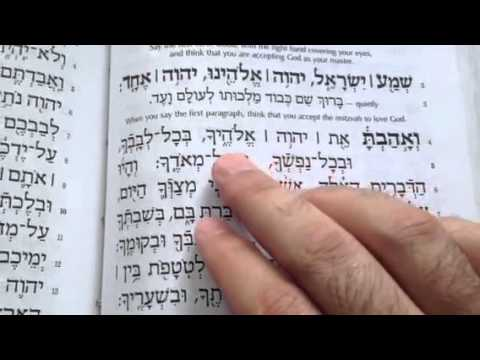 Practice reading the Shema