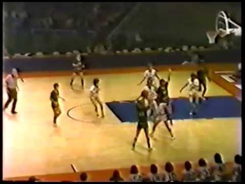 1981 IHSA Girls Basketball Class AA Championship Game: Elk Grove vs. Peoria (Richwoods)