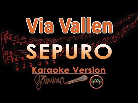 Via Vallen - Sepuro KOPLO (Karaoke Lirik Tanpa Vokal)
