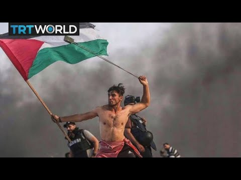 Israel-Palestine Tensions: We Are Not Numbers challenges media on Gaza