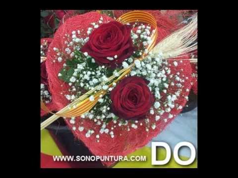 Diapasones harm nicos pitag ricos con im genes de rosas de - Fotos de rosas de colores ...
