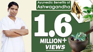 Ayurvedic Benifites of Ashwagandha (Winter Cherry) | Acharya Balkrishna thumbnail