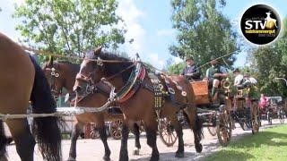 Kaiserfesttage 2019: 1. Pferdekutschen-Gala in Bad Ischl