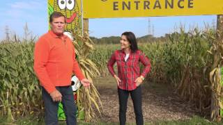 Listed Plus TV - Thanksgiving Episode Featuring Lindley's Farm