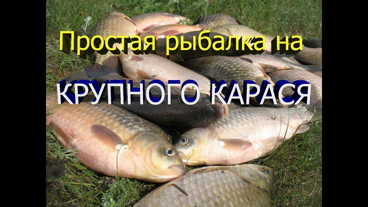 В интернет-магазине itsklad. Kz собран огромный каталог, где не последняя роль отведена разделу весы кухонные, представленный официальным.