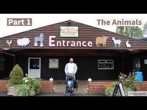 Day Trip To Fishers Farm Park The Animals With Adriaan