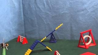 Dog Agility Stop Motion