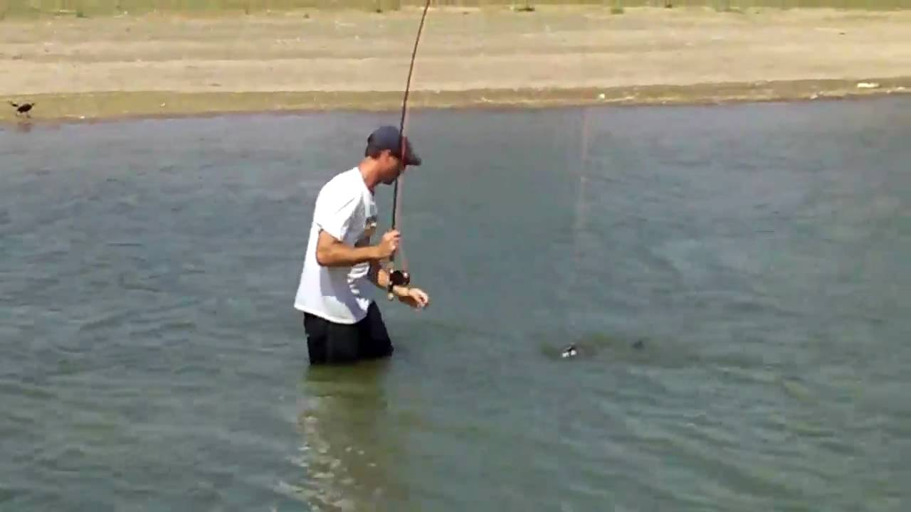 Lake Lavon Fly Fishing Record Channel Cat Fish Youtube