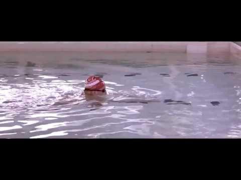 Вода не знает, сколько вам лет! Плавание, Как прекрасен этот спорт