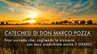 Don Marco Pozza - Non succeda che, cogliendo la zizzania, con essa sradichiate anche il grano