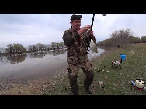Рыбалка Астрахань 2020 г.  31 марта