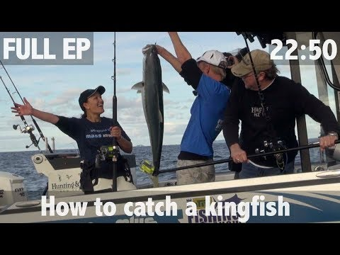 HOW TO CATCH A KINGFISH