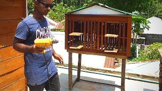 How to build pigeon loft on rooftop   Make Small pigeon cage