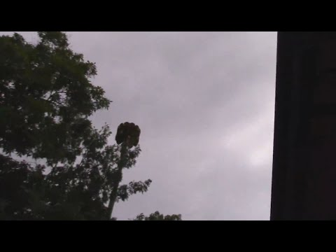 Tornado Warning and Federal Signal 3T22/Whelen Siren Activation, 9/3/2018, Island Lake, IL