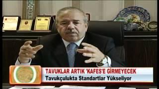 TAVUKLAR ARTIK 'KAFES'E GİRMEYECEK 28.03.2012